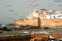 Essaouira (4) (juanmerkader) Tags: ocean sea beach landscape mar picture playa morroco marrakech marruecos essaouira marroc oceano