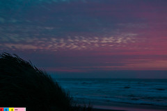 North Coast Crush: A Dramatic Sunset (Part 57): Thoughts of Love (Pacific NW / Nor Cal Surveyor (2,000,000 Thanks!!)) Tags: life sexy colors beautiful beauty northerncalifornia wow relax paradise quiet peace scenic peaceful calm enjoy serenity romantic selfreflection serene norcal seduction picturesque refreshing humboldtcounty beautifulclouds enchantment dramaticsunsets soothing northcoast beautifulsky peaceofmind northerncaliforniacoast marinate dramaticclouds sextacy redwoodcoast samoabeach gentlewaves norcalcoast endingtheday pristinewaters northerncaliforniasunset norcalsunset humboldtcountycoast norcalphotographers lifealongthecoast pristinecoastline pristinecoast gentlecoastline