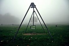 sempre ti aspetto qui (Claudia Gaiotto) Tags: autumn tree field misty fog waiting seesaw nebbia altalena nebla