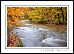 The Wutach Gorge (Bernd F. Laeschke) Tags: longexposure travel autumn trees vacation color nature water creek river germany landscape photography countryside scenery fineart environment blackforest ecosystem wutachschlucht wutach canon60d wutachgorge imagineyourworld vision:outdoor=0776 berndflaeschke