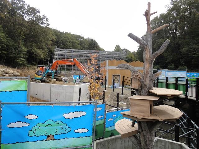 来年オープン予定のハクトウワシ舎の工事が行われていました。|名古屋市東山動植物園
