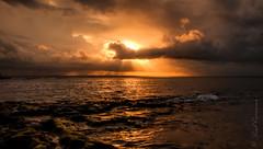 Golden sunset (SydneyLens) Tags: sunset seascape clouds landscape photography waves sydney australia hdr laperouse hdrphotography visitnsw nswgateway