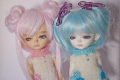 Twins vampire miels ( Karo ) Tags: vampire tan special miel bjd limited ts mystic ws latidoll lati
