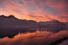 Evening light in Faskrudsfjordur (*Jonina*) Tags: sunset mountains reflection iceland sland speglun fjll 3000views slsetur 100faves 50faves 4000views 6000views explored 7000views 8000views 200faves 12000views 9000views sandfell 25faves fskrsfjrur 11000views 300faves faskrudsfjordur jnnagurnskarsdttir
