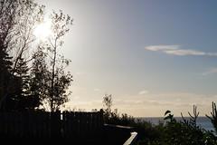 Cape Breton/ Nova Scotia (hannadittmar) Tags: flowers blue light sunset red summer sky sun canada tree green love beach nature beautiful beauty weather night clouds sunrise twilight pretty day novascotia dusk capebreton mothernature cloudporn photooftheday skylovers iphonesia tagsforlikes
