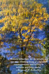 ...without reflection... (Adriana Glackin) Tags: travel blue usa reflection tree tourism water canon landscape gold quote adriana 7d impressionism yosemitenationalpark impressionist mercedriver