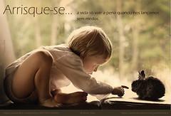 Print (Joseh_Silva) Tags: rabbit children vida phrase pensamento mensagem frase arrisque