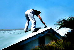 Skywalker (Steve Taylor (Photography)) Tags: blue trees roof shadow white black painting bucket paint bluesky brush painter overalls worker pail simplistic