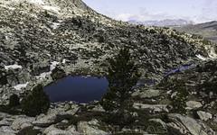 Estanyola d'Emportona (Principat d'Andorra) (kike.matas) Tags: primavera nature canon lago sigma paisaje andorra montaas pirineos andorre encamp canoneos50d principatdandorra  kikematas emportona lightroom4 sigma1020f35exdchsm estanyolademportona