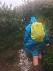 IMG_9170 (Seif Sallam) Tags: travel vietnam sapa fansipan hiking trekking