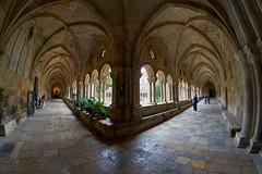 Claustre Catedral de Tarragona (Escipió) Tags: claustre tarragona catedral fisheye samyang8mmf35