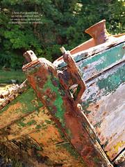 L'AME D'UN GRAND PERE (L A N I K) Tags: epave bateau bretagne coque