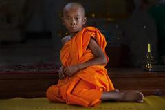 _MG_4940-le-17_04_2016_wat-thail-wattanaram-maesot-thailande-christophe-cochez (christophe cochez) Tags: burmes burma birmanie birman myanmar thailand thailande maesot myawadyy monk bonze novice religion watthailwattanaram travel voyage bouddhisme buddhism portrait