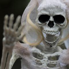 Fright Night (Jam-Gloom) Tags: halloween spooky hallowseve halloweve allhallows olympusomdem5 olympusomd olympusuk 60mm28 60mmmacro28 60mmmacro bokeh bokehful bokehlicious depthoffield dof scary creepy autumn autumnal fall october skeleton skull skele skelly brideandgroom mykindofwedding bride groom hauntingly haunting doll skeletondoll toy