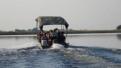 Okavango Delta, Botswana - Sept 2016 (Keith.William.Rapley) Tags: botswana rapley keithwilliamrapley september2016 ockavango ockavangodelta delta boat water river