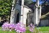 Autumn Crocus (Trish Mayo) Tags: crocus autumncrocus mausoleum greenwoodcemetery cemetery greenwood