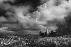 park view (Andy Kennelly) Tags: city view clouds bw transamerica building sf san francisco