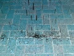 cascades and water craters (Star, LaikazEyes: zazzle.com) Tags: negative inverted color blue white black rectangles splash drops water rain storm patio paved bricks tucson az arizona 20160930141446 cellphonepic cellular