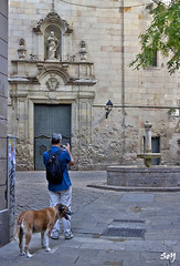 En la Plaa de Sant Felip Neri... (svet.llum) Tags: barcelona catalunya catalua ciudad arquitectura plaza perro animal gente gtico iglesia