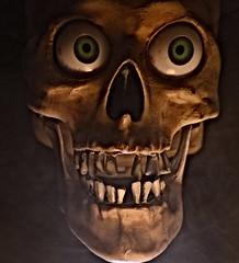 Brush Your Teeth Campaign (Caroline.32) Tags: halloween spookyandfrightful skull badteeth macro nikond3200 18140mmlens fogmachine fog macromondays