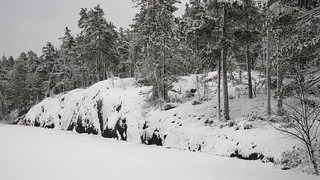 The snowy southern shore of Iso Majaslampi (Nuuksio national park, Espoo, 20140126)