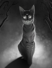 Madness (Shmoonify) Tags: mad madness alice wonderland aliceinwonderland cheshire cheshirecat cat cats scary spooky horror creepy luisshmooart shmoonify forest creature spirit storybook childrensbook woods