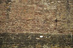 DSC_6384 [ps] - Drift (Anyhoo) Tags: anyhoo photobyanyhoo dounecastle castle doune scotland uk stone stonework fortress wall fortification