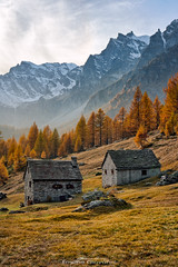 Le baite e l'autunno (Emone Giovanni) Tags: autumn baita chalet autunno rosso alpi bagliore alpedevero piemonte