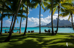Paradise (JSTAR377) Tags: tropical frenchpolynesia travel hot beac beach bluewater water sailing boat borabora palmtrees fourseasons hotel