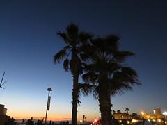 IMG_3807 (pbinder) Tags: 2016 201606 20160619 june jun sunday sun los angeles california la ca laca socal cal southern cali socali hermosa beach hbca hermosabeach