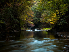 North Aiki Mountain Stream -北相木渓谷- (chikuma_riv) Tags: japan nature landscape river lake mountain forest flower sunset sunrise spring summer autumn winter leaves