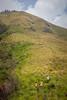 IMG_7858 (Siva-G) Tags: topstation trekking theni