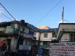 Mcleodganj_7295 (Manohar_Auroville) Tags: macleodganj mcleod ganj dharamshala tibet tibetan culture heritage himalaya himatyal pradesh india manohar luigi fedele dalailama forest mountain village