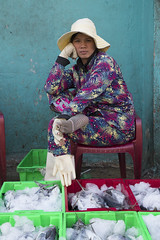 Woman selling fish (Yves Maurer) Tags: vietnam fish market portrait documentary colours ice nha trang resting proud