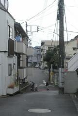 tokyo6131 (tanayan) Tags: urban town cityscape tokyo japan nikon j1   road street alley tabata