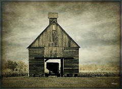 Midwestern Corn Crib (MEaves) Tags: barn illinois midwest cupola weathered toned textured ruralamerica corncrib farmstructure