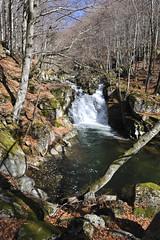 Ruisseau - Rieumallet