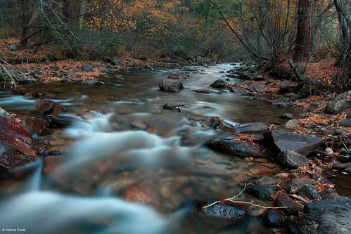 Photo - Lefthand Creek at Buckingham Park.