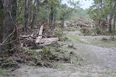 Carburn Park Flood Damage (JesseJ.) Tags: canada calgary canon flood destruction ab alberta bowriver devastation bowriverpathway carburnpark canon40d yycflood calgaryflood2013 abflood