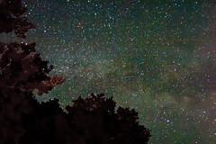 Milky Way and Iridium Flare (Tom Hughes Photo) Tags: trees lake night canon way stars photography eos star long exposure nightshot bright little shots michigan 10d flare milky starry township iridium evart hartwick 2485mm