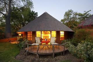 Cape Town to Kruger Photo Safari 17