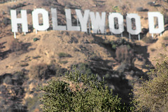 Hills (michael_hamburg69) Tags: california usa white america la losangeles unitedstatesofamerica letters landmark hills hollywood hollywoodsign amerika westcoast kalifornien buchstaben weis westküste goodviewfrom3000canyonlakedrive