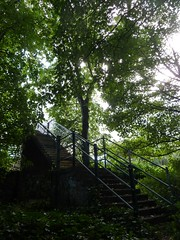 The Jungle Railway Bridge (milnefaefife) Tags: bridge trees leaves woodland landscape graffiti scotland footbridge dundee branches railway treetrunk harris railing railwaybridge thejungle harrisacademy