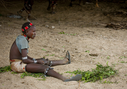 Hamer People Celebrating Bull Jumping Ceremony By Traditional Ritual Dances And Music Omo Valley Ethiopia