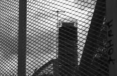 (Jacobo Canady) Tags: park parque blackandwhite bw espaa building byn blancoynegro skyscraper reja blackwhite sevilla andaluca edificio seville bn highrise andalusia rascacielos americangarden torrecajasol torrepelli jardnamericano
