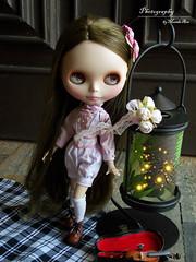 Dorothy, Blythe T42 custom (Osmundo Gois) Tags: dorothy pure neemo blythet42custom
