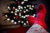 gallery 1 (Nanki_B1) Tags: christmas red white tree feet wool socks lights bokeh knit cheating dailyshoot ds385