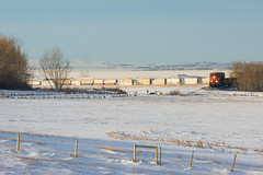 CN 114 @ Beiseker, AB (Mathieu Tremblay) Tags: railroad winter snow toronto canada calgary cn train three hiver railway canadian hills national alberta neige chemin fer canadien subdivision intermodal 2257 es44dc beiseker q114