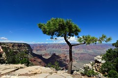 Gran Canyon (kstenjung) Tags: arizona usa canyon gran