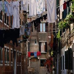 Sunday is Laundry Day (Veneto 8)